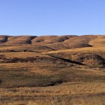 Rolin hills California